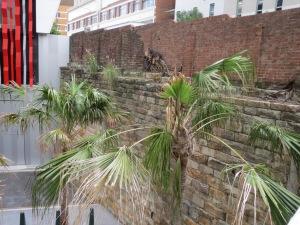 old wall near Meriton Soleil