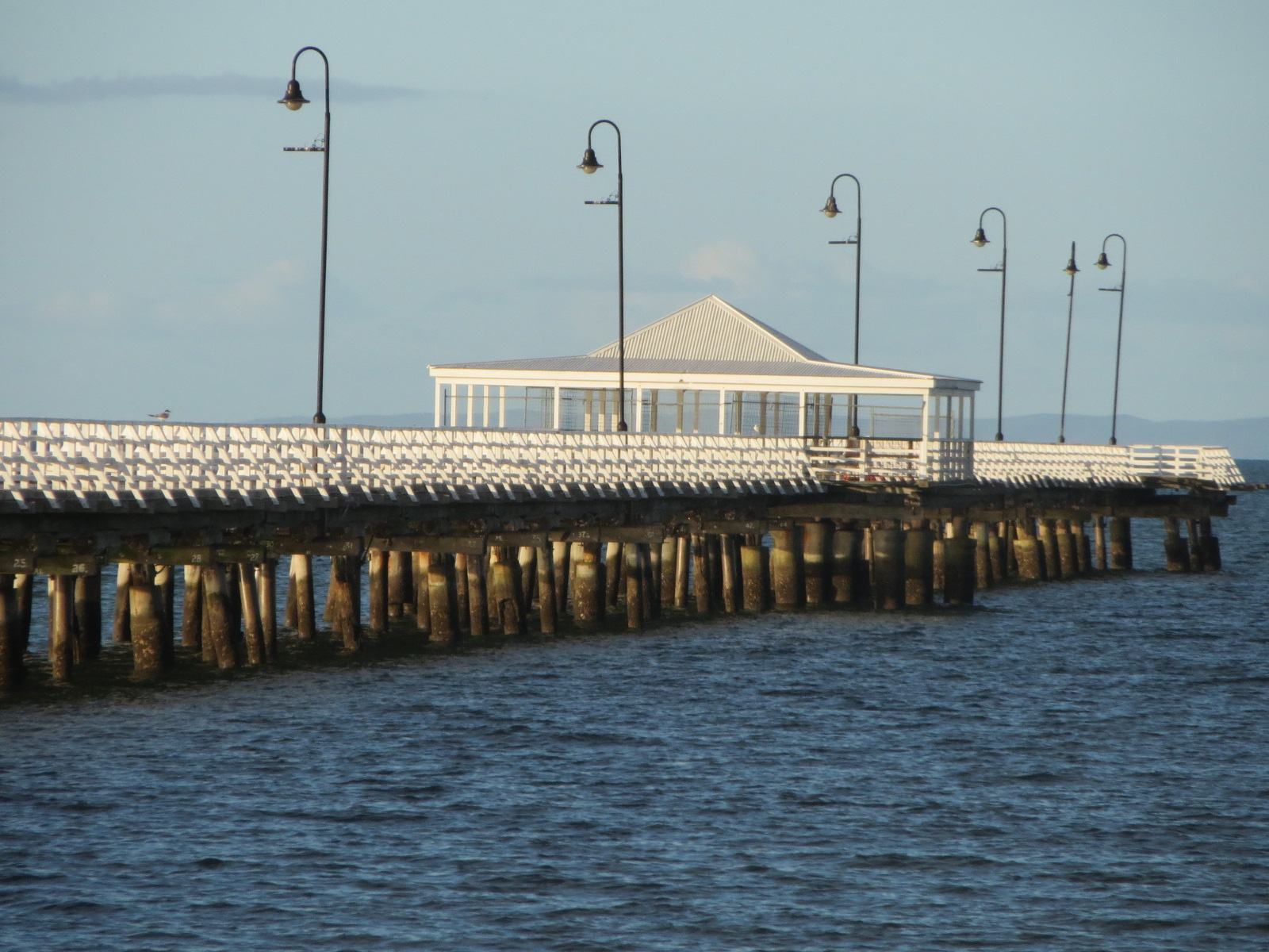 Shorncliffe pier brisbane s largest timber pier opening for Pier home